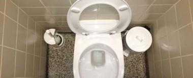 トイレを詰まらせて半泣きになったことありますか?私はあります
