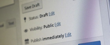 WordPressで特定の記事またはカテゴリーのみアドセンスを非表示にする方法