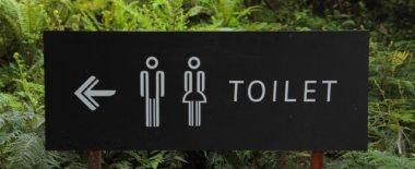 トイレの個室で安心して大ができるようになったのは大学からだったけどそうじゃない人いる?